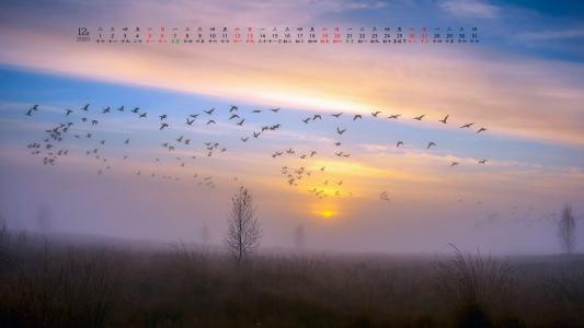 2020年12月自然风光日历