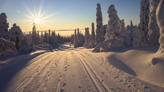 冬天拉普拉德村庄自然风光