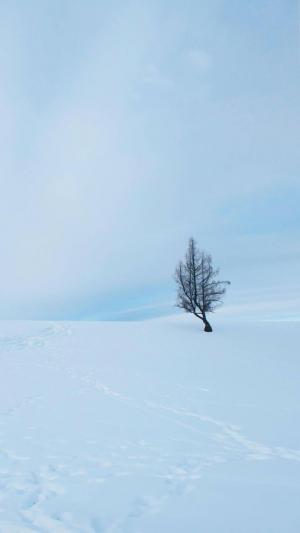 唯美冬天雪景风光