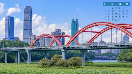 2021年6月深圳洪湖公园日历