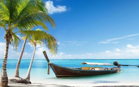 迷人的夏天海边风景风光