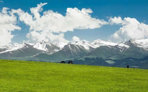 苍苍茫茫的新疆喀拉峻草原
