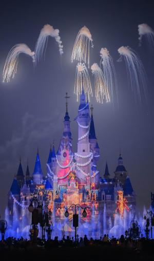 迪士尼的奇妙夜晚