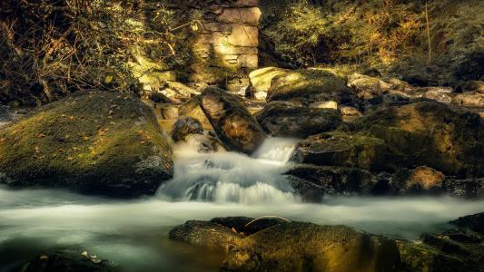 大自然幽静的溪流