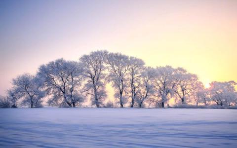 冰雪王国雾凇岛唯美风光