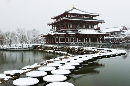 芙蓉园初雪风光景色