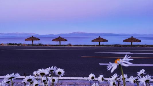 新疆伊犁美景